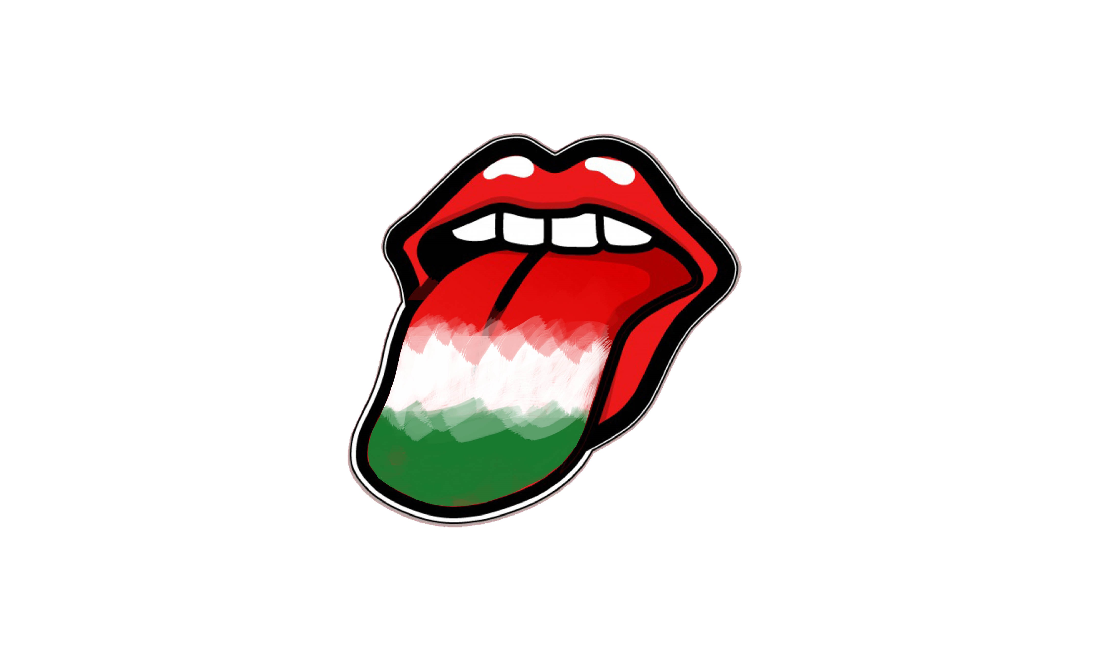 hungarian flag tongue language