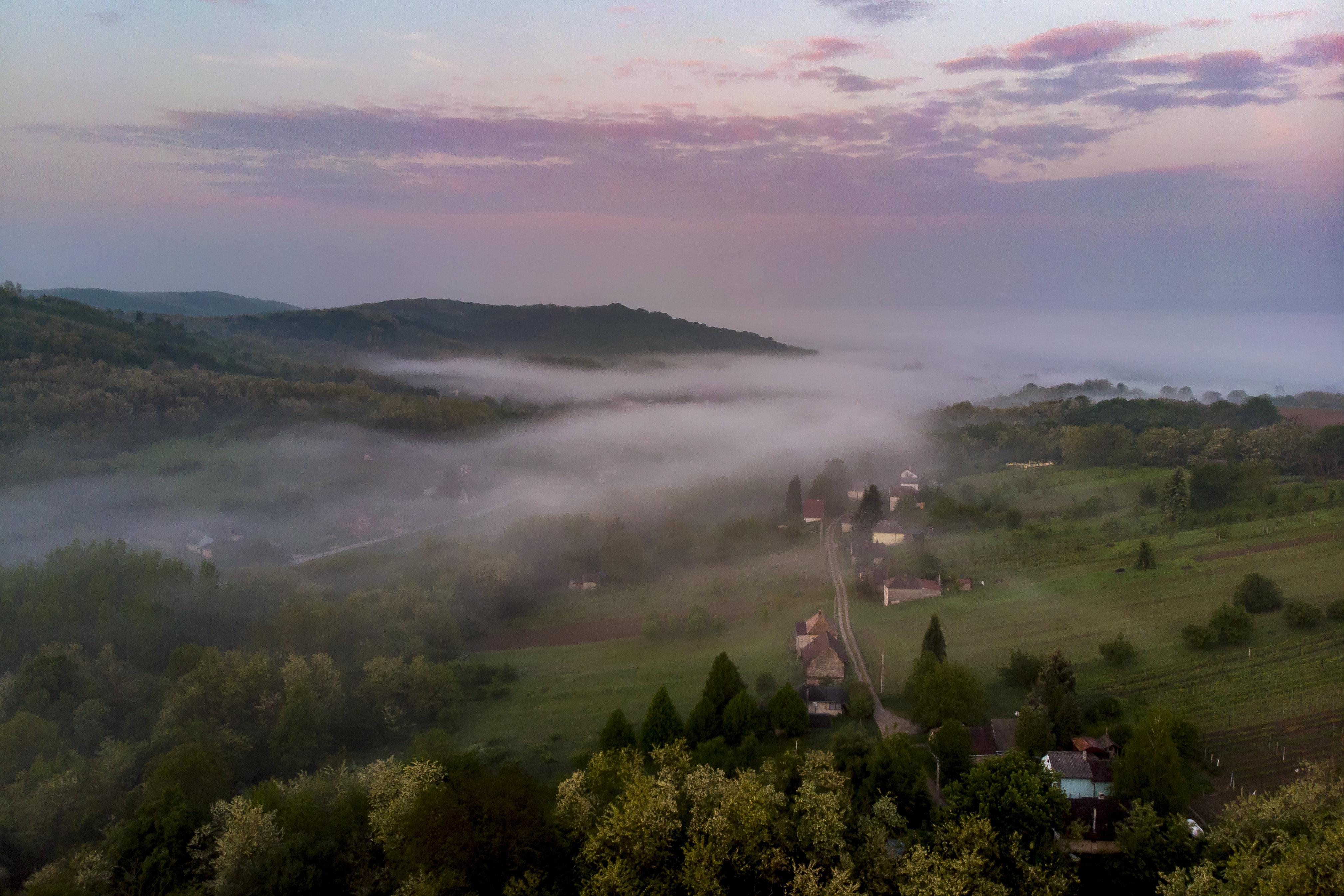 weather fog cloudy dawn