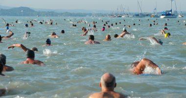 Cross-Balaton swim