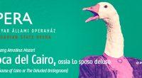 L'oca_del_Cairo