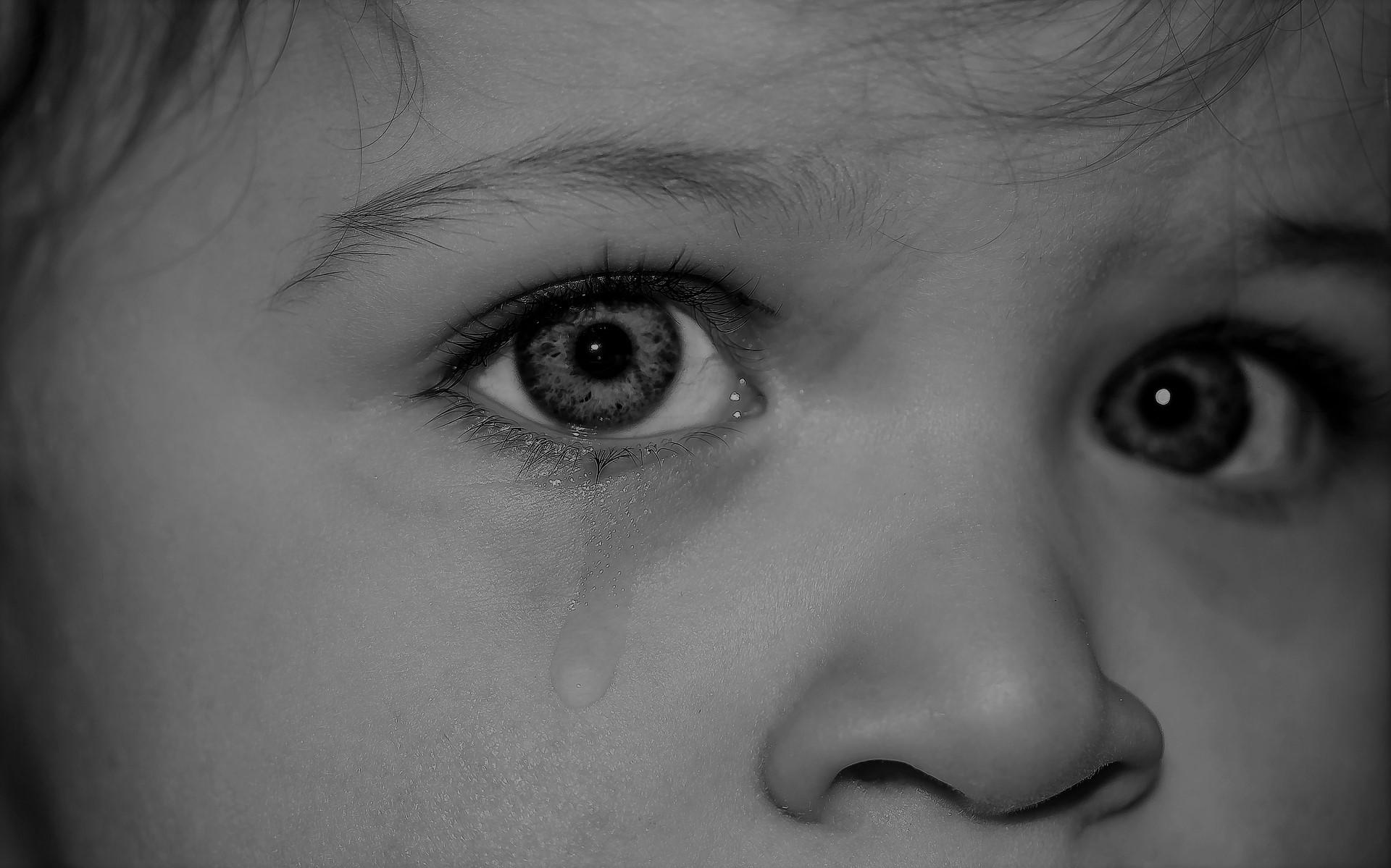 enfant, famine, problème, Hongrie
