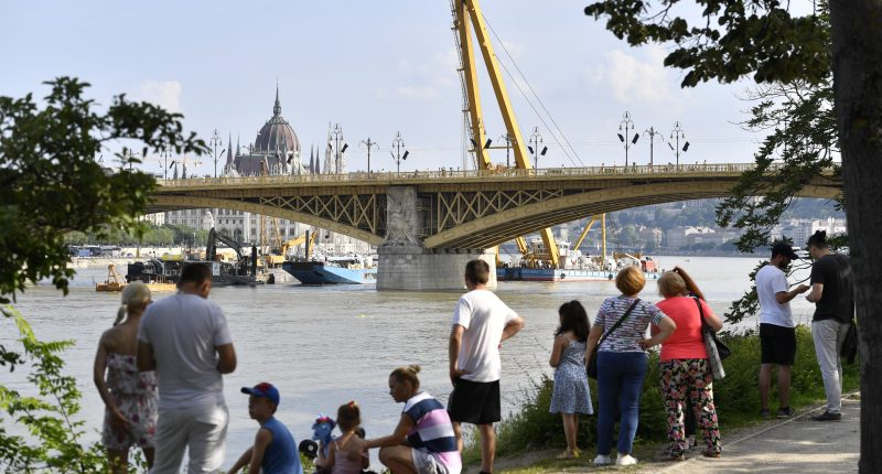 ship collision in budapest