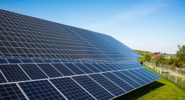 renewable energy, investment, solar power, china