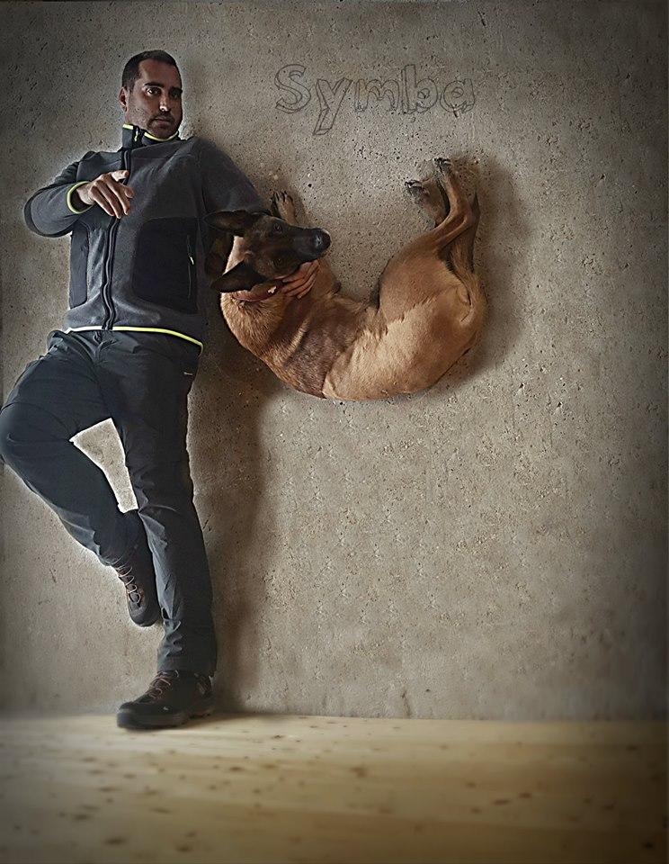 rescue dog, world champion, symba