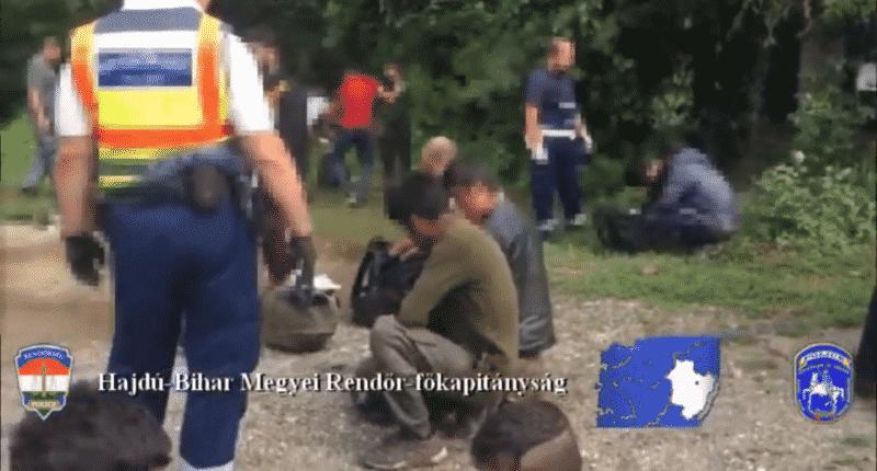 human smuggling
