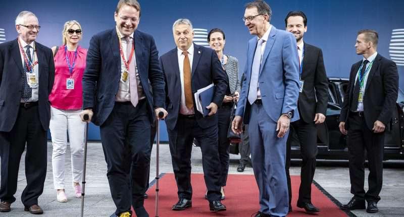 hungary delegation eu