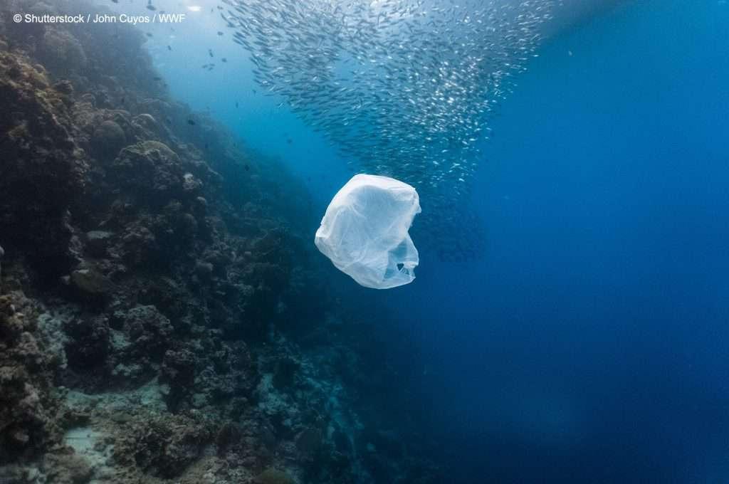 pollution, sea, plastic