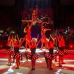 Circus Budapest