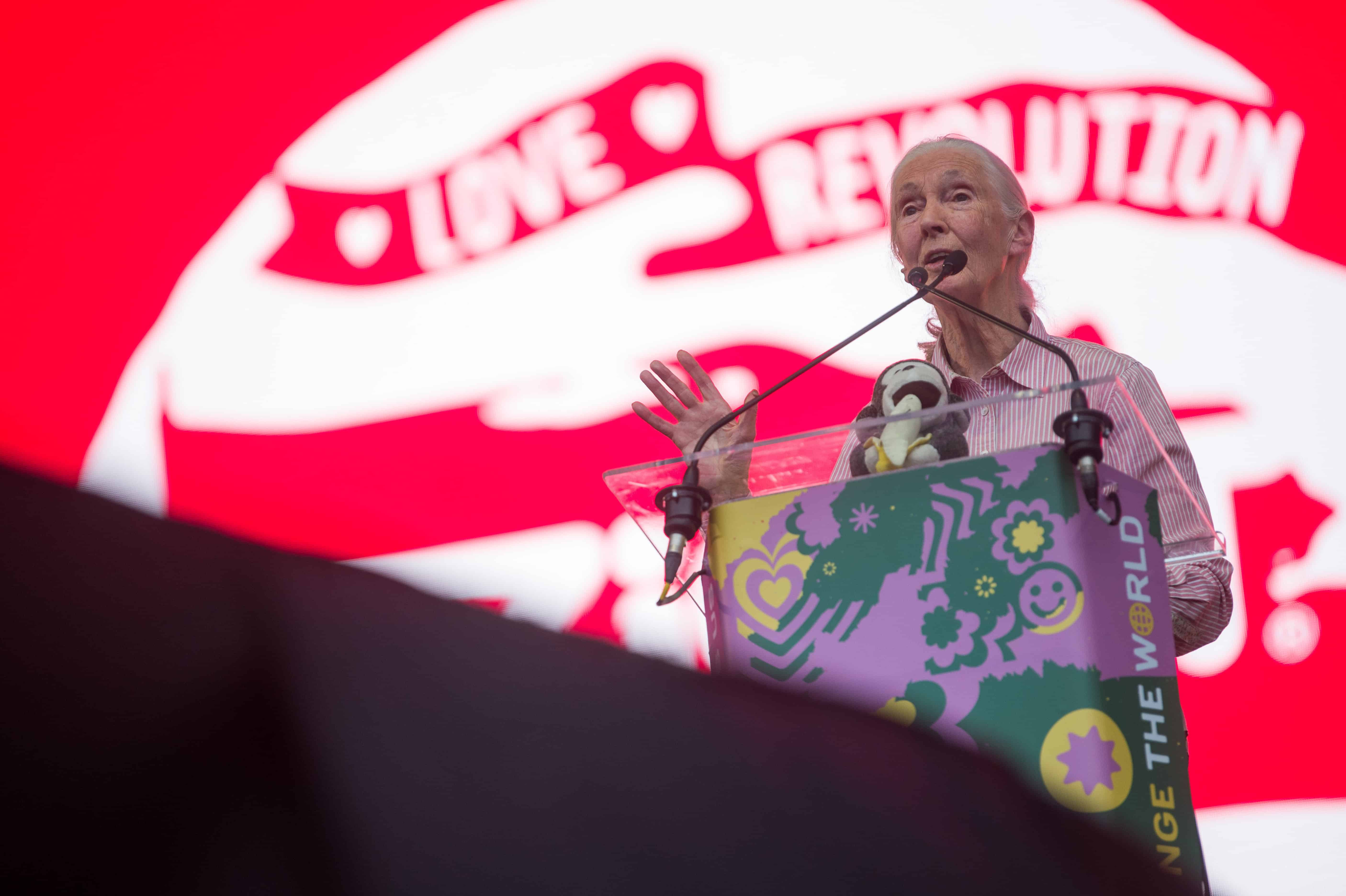 """Jane Goodall at Sziget: """"Young people are changing the world"""""""