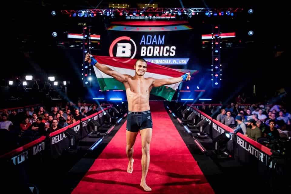 Ádám Borics, Hungary, MMA, sport