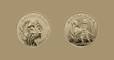 coin with vizsla