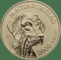 coin with vizsla