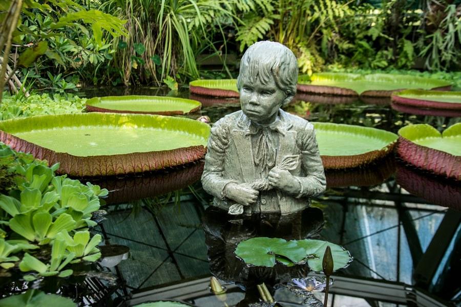 füvészkert, garden, budapest