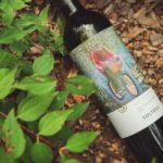 New Soltész wine labels adorned by contemporary paintings in the Eger winery