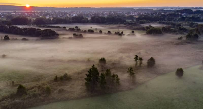 weather fog morning