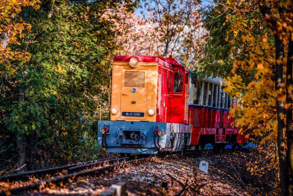 Children's Railway, forest, Budapest, Hungary