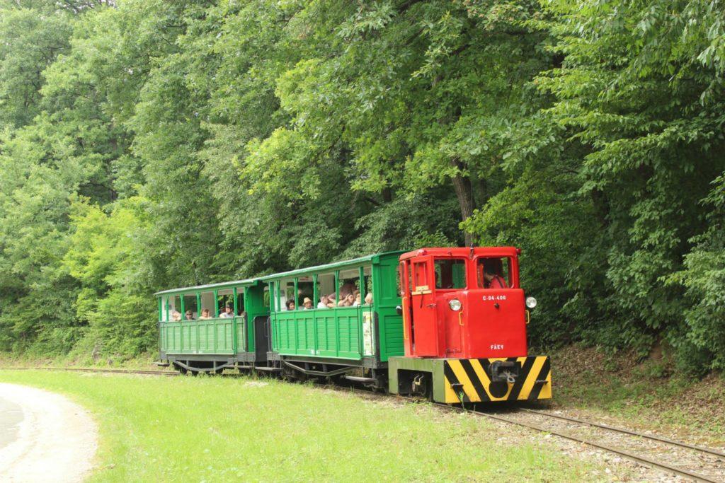 Felsőtárkány, forest, Hungary, railway