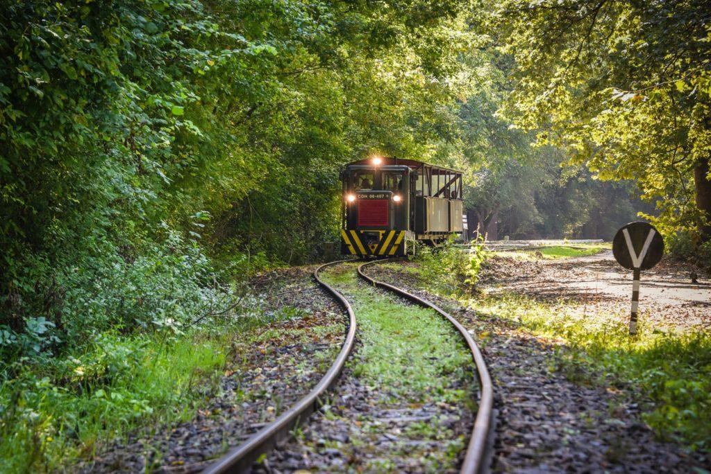 Gemenc, forest, railway, Hungary