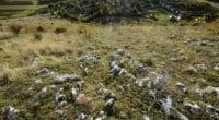 aggtelek_national_park