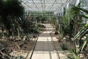 debrecen botanical gardens