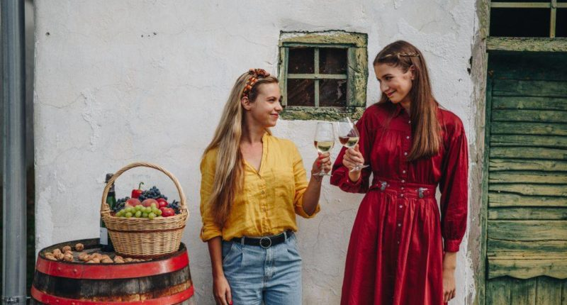 girls, wine, Hungary, discover
