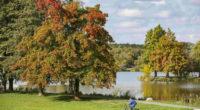 weather autumn in nagykanizsa