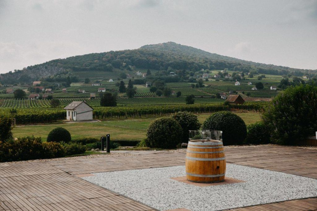 wine region, Hungary, discover