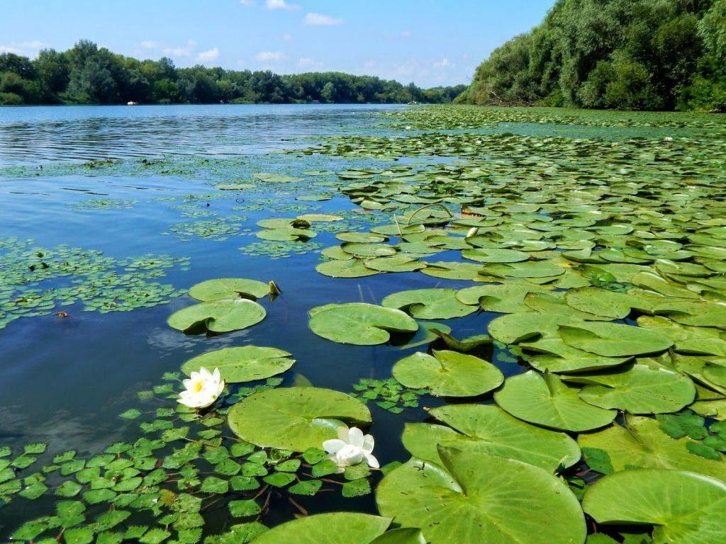 Őrségi National Park, Hungary, nature