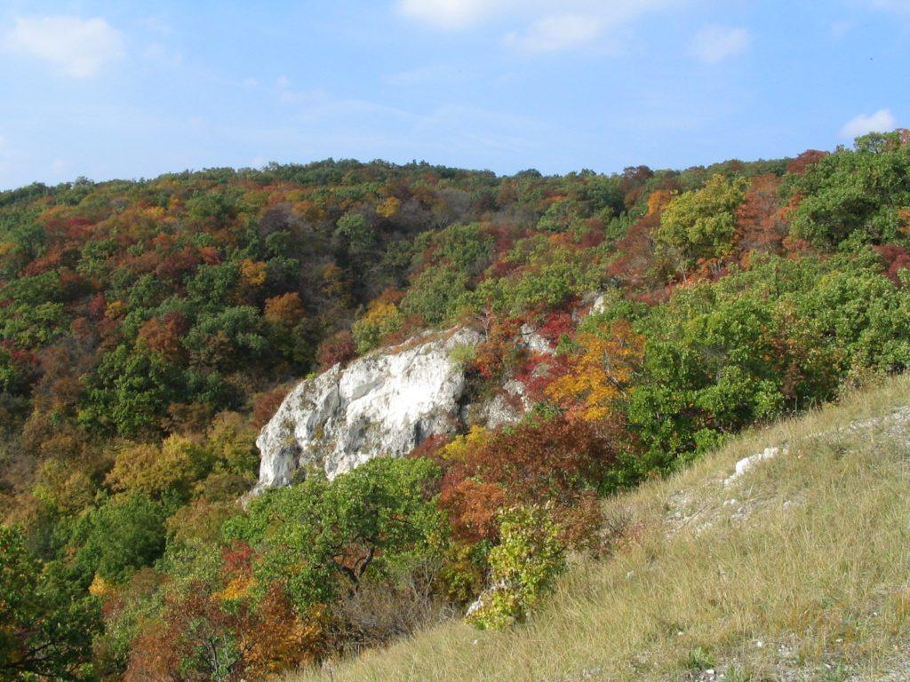 Duna Ipoly National Park, Hungary, nature