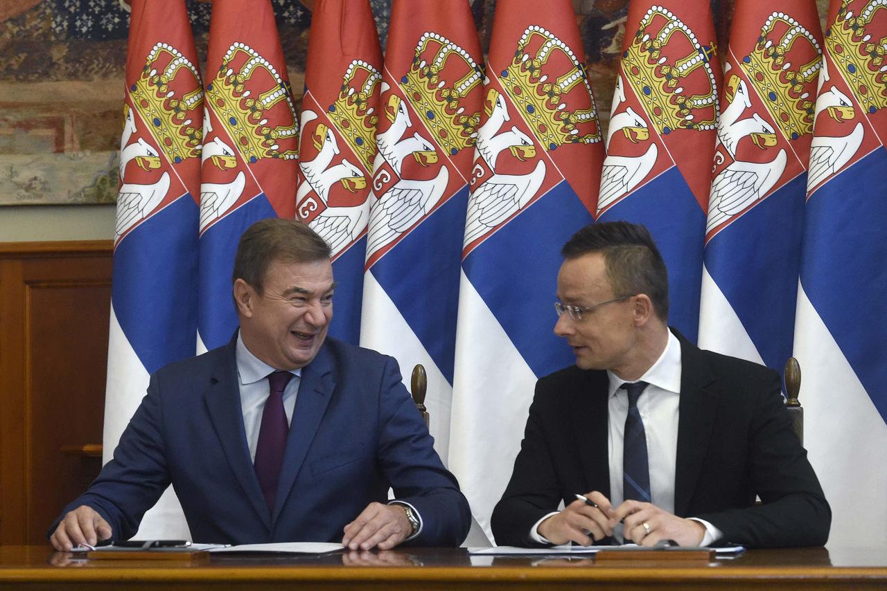 Goran Knezevic, Serbia's economy minister