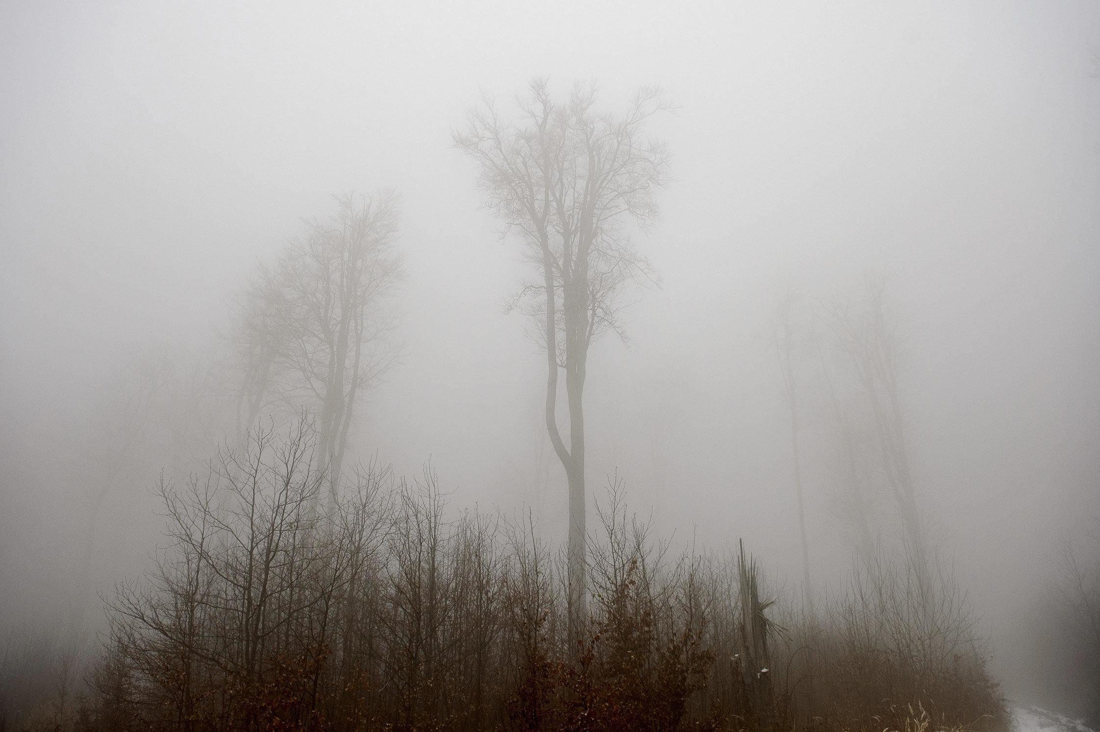 fog in hungary