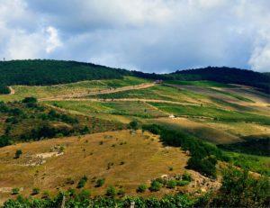 Nagy Eged Hegy, Hungary, nature, geological