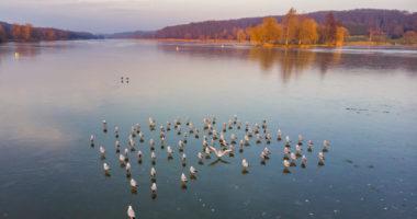 Nagykanizsa-hungary-winter