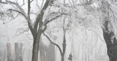 debrecen winter frost fog