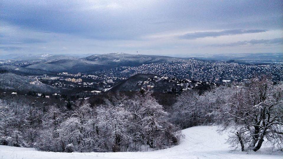 normafa in winter