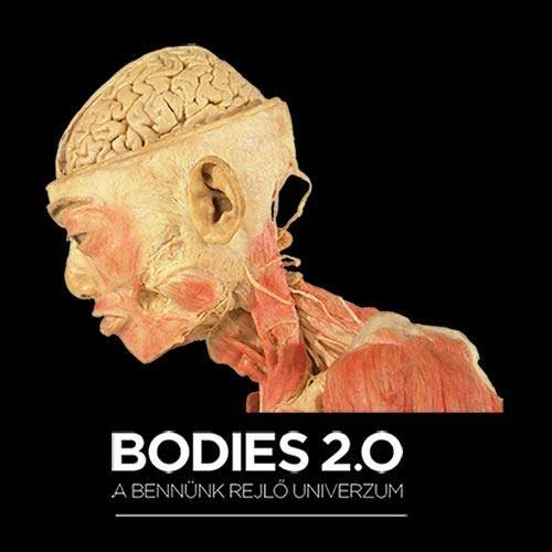 Bodies 2.0 - The Universe Inside Us