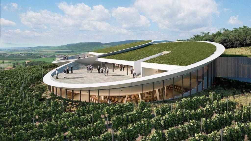 Sauska Winery View Design Plan Tokaj Terrace