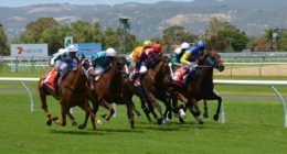 horse-racing sports betting