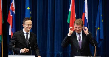 hungary slovakia cooperation