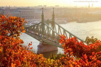 liberty bridge fall