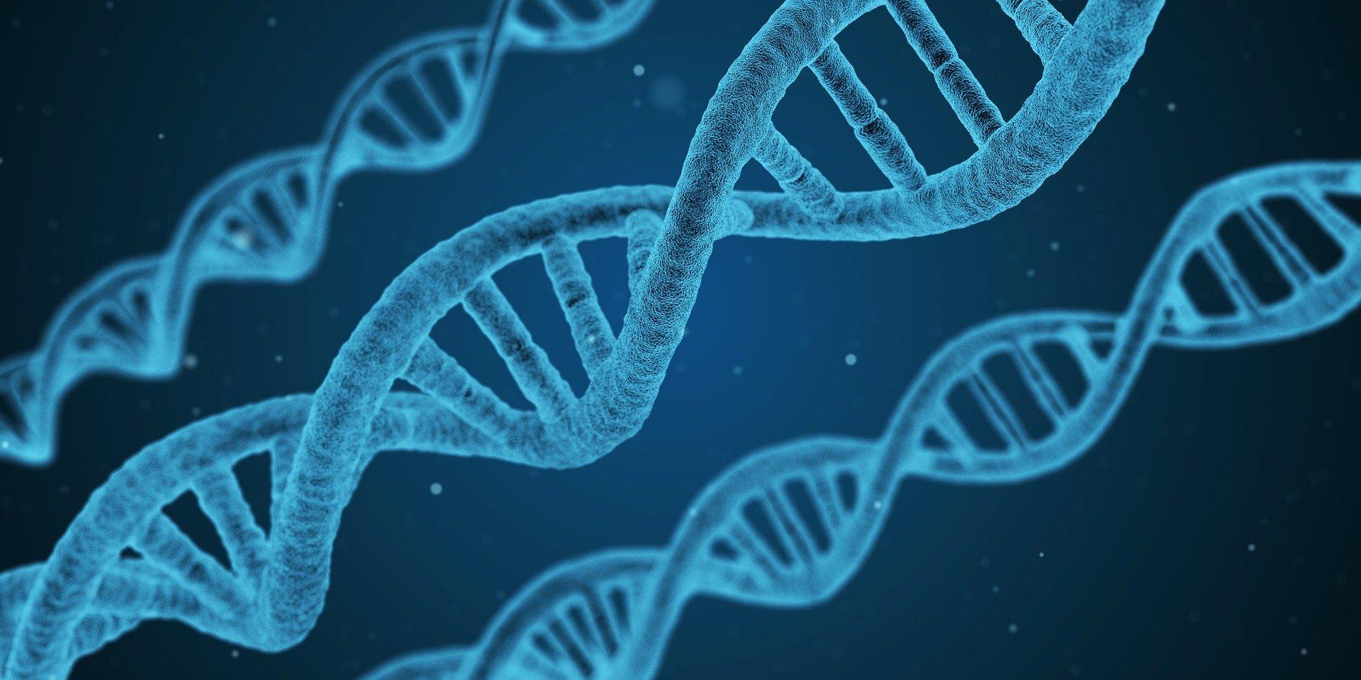 ADN DNS