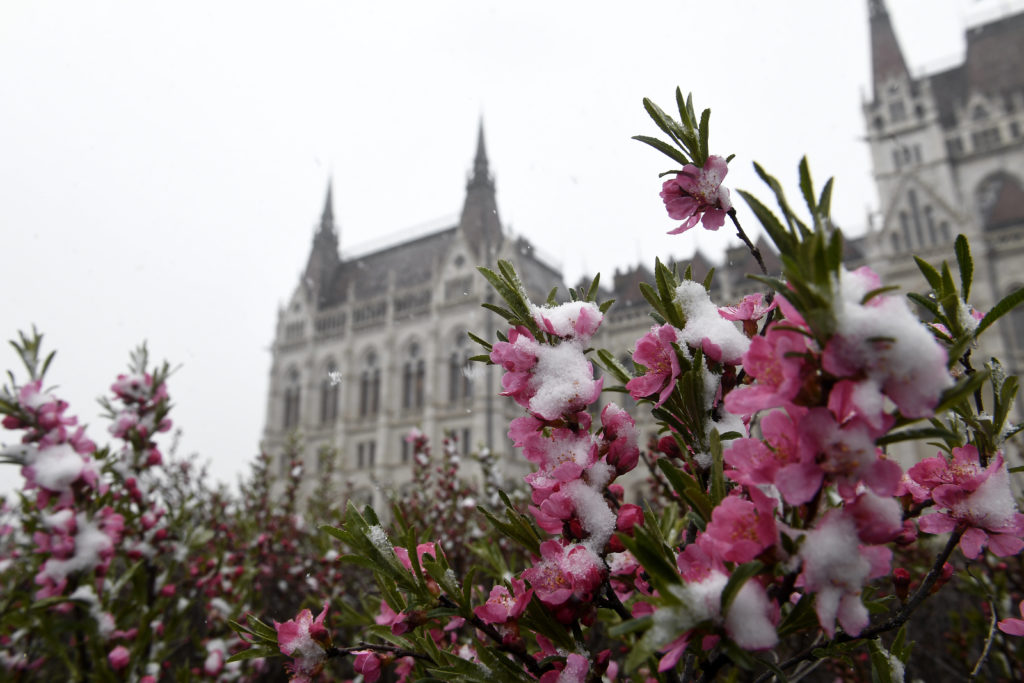 Snow Budapest
