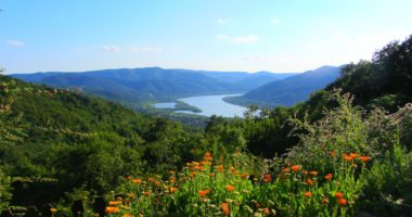Danube Bend, nature, Hungary, trail