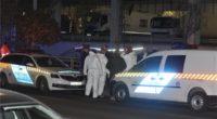Budapest murder
