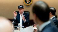 trump in a hat