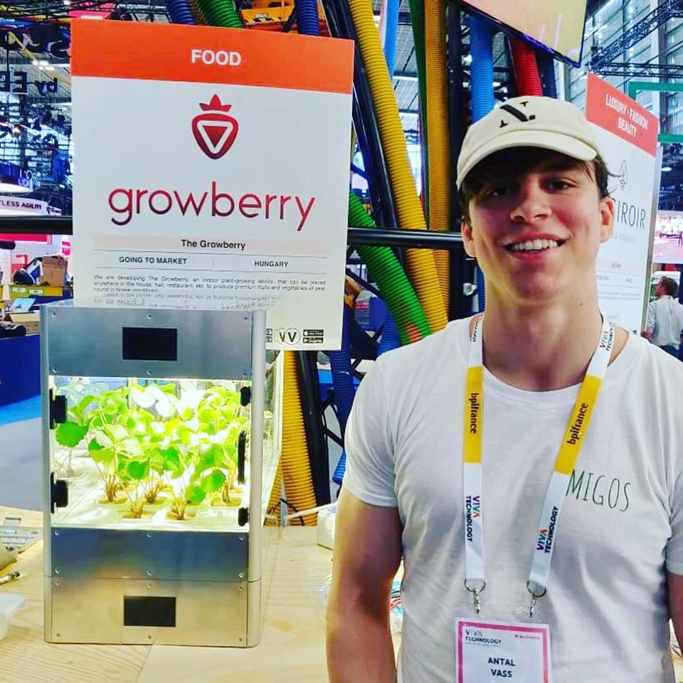 Hungarian start up growberry