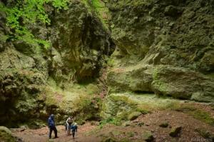 Rám Gorge, nature, Hungary