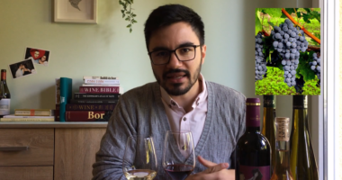 wine explanation video