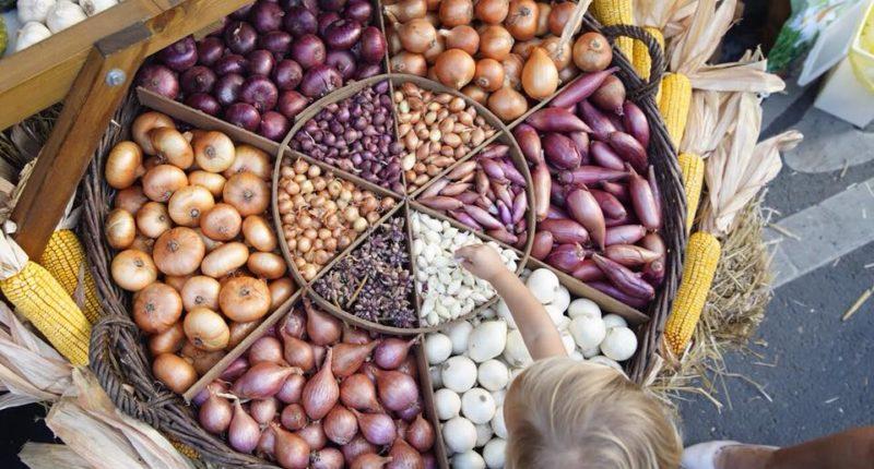 Makó Onion Festival