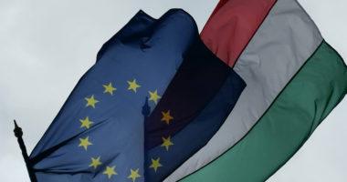 EU Hungary flag